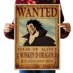 Avis de recherche monkey D Dragon